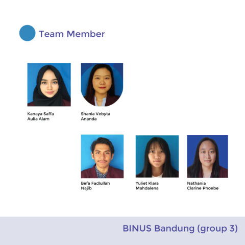 BINUS Bandung ( Group 3)